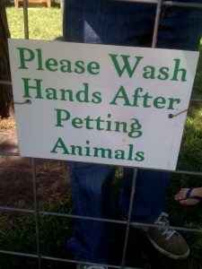 petting_zoo_handwash_10(4)