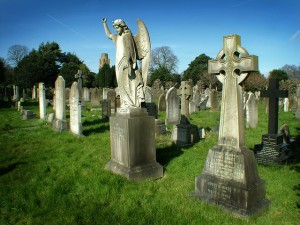 Manuscript Graveyard image by jimmedia via flickr creative commons