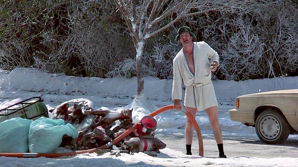 CINEMA REMEMBERED: Christmas Vacation and The HOME ALONE Moment   That Moment In