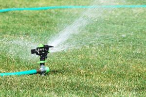 6198974-Lawn-Sprinkler-with-Hose-Stock-Photo