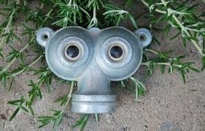 owl-eyes-48adb9b8