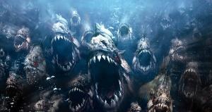 piranha-hd